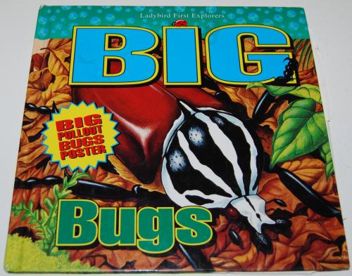 Big bugs book