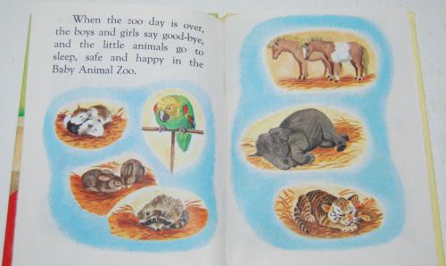 Baby animal zoo 10