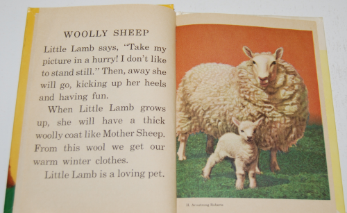 Animal mothers & babies 2