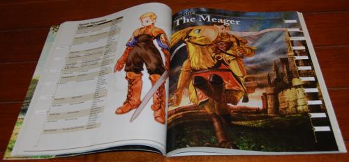 Final fantasy tactics guide 11