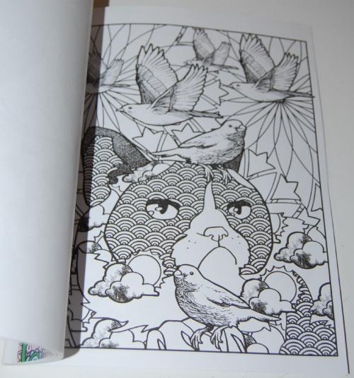 Grumpy cat hates coloring book 7