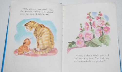 Christopher kitten 4