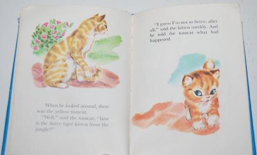 Christopher kitten 8