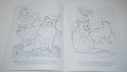 Dover cat lovers coloring book 3