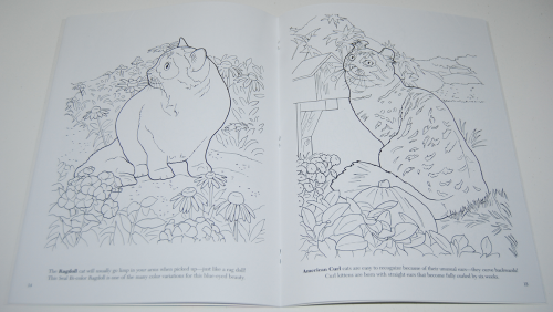 Dover cat lovers coloring book 4