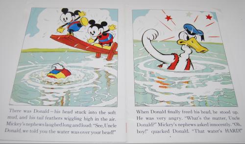 Disney donald duck 5
