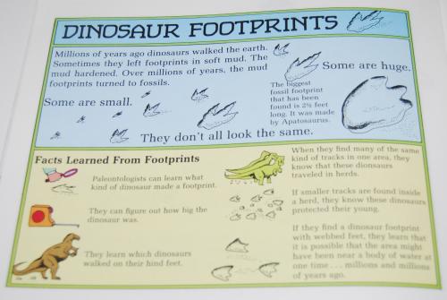 Scholastic dinosaurs 10