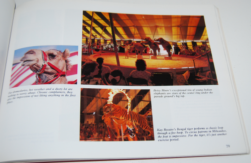 The great circus parade 5