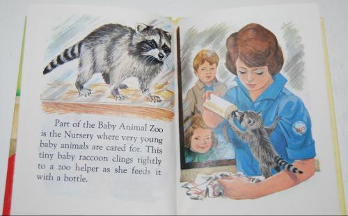 Baby animal zoo 8