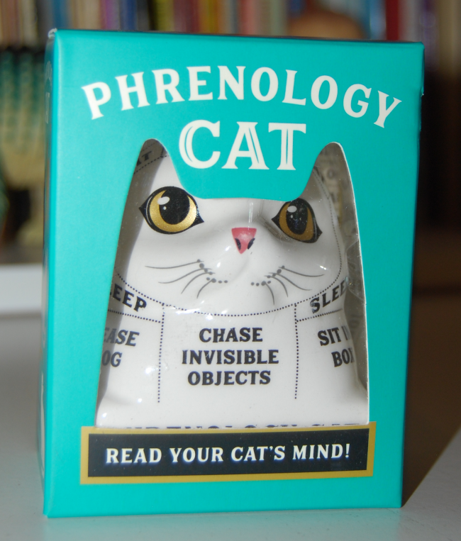 phrenology cat