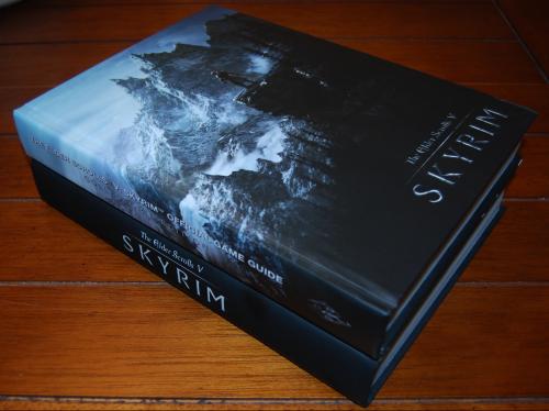 Skyrim guide