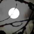 2021 snow moon