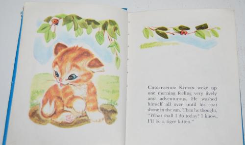 Christopher kitten 2