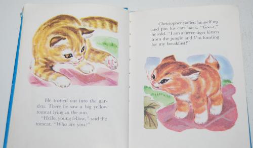 Christopher kitten 3