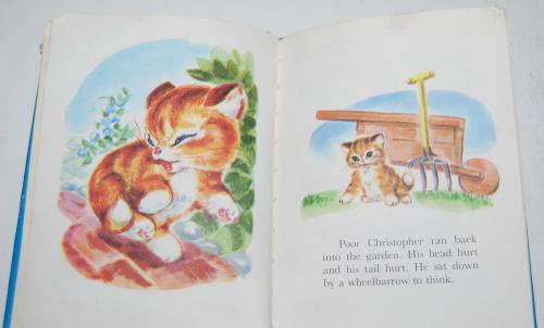 Christopher kitten 7