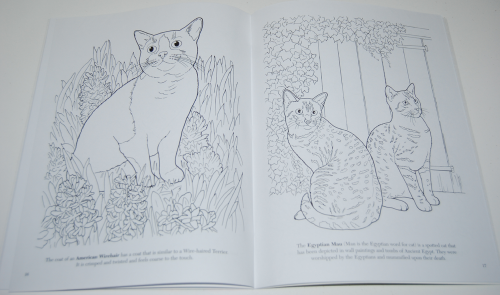 Dover cat lovers coloring book 5