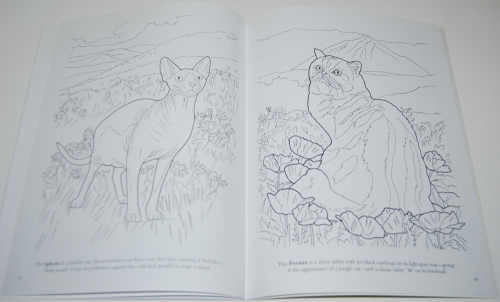 Dover cat lovers coloring book 6