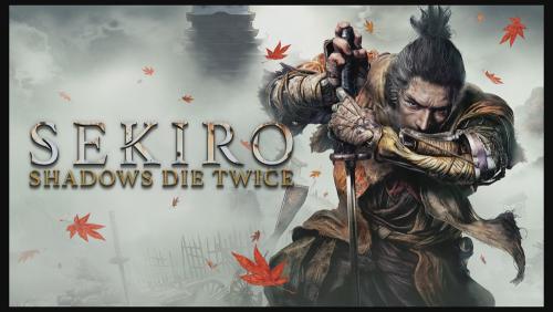 Sekiro update 4