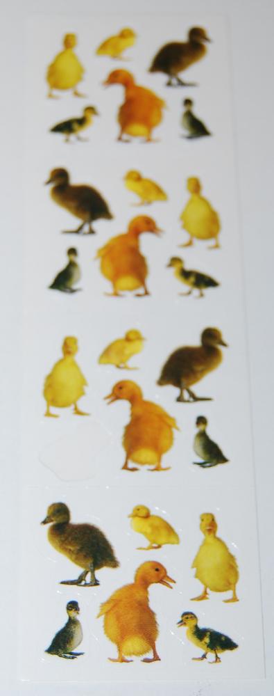 Duck stickers
