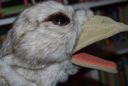 Folkmanis ostrich puppet 1