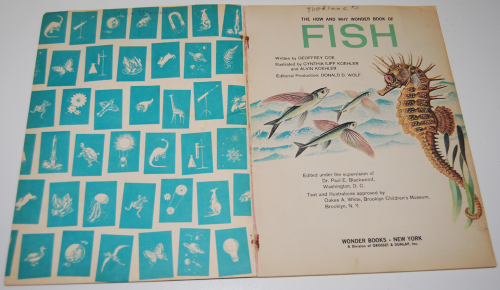 How & why book of fish 1
