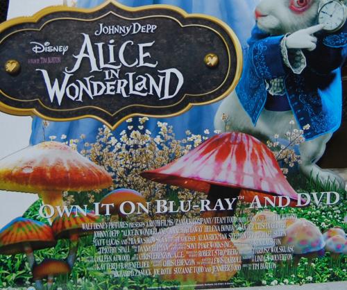 Disney alice in wonderland x