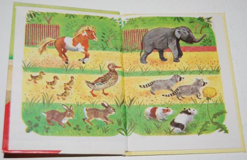 Baby animal zoo 1