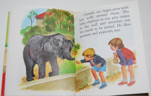 Baby animal zoo 6