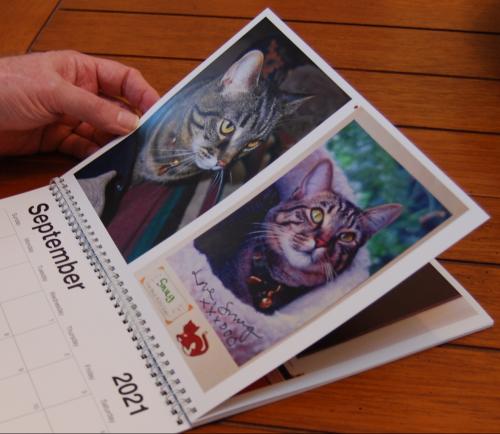 2021 calendar cats pittypats 2