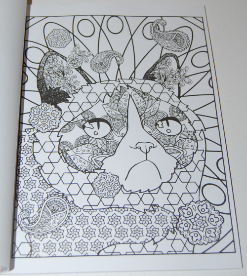 Grumpy cat hates coloring book2