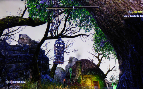 Eso witch's cottage