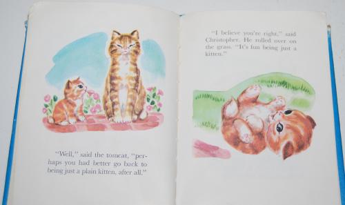 Christopher kitten 9