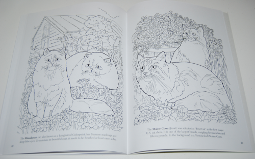 Dover cat lovers coloring book 7