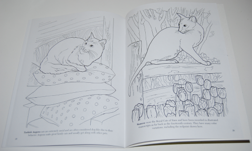 Dover cat lovers coloring book 8