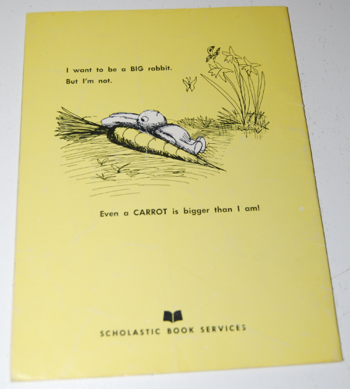 The littlest rabbit book