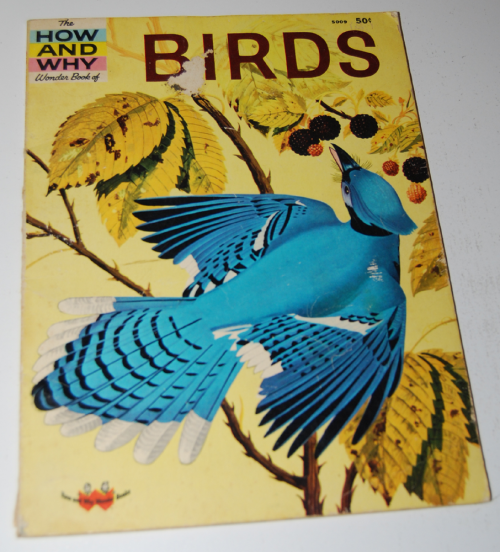How & why birds book