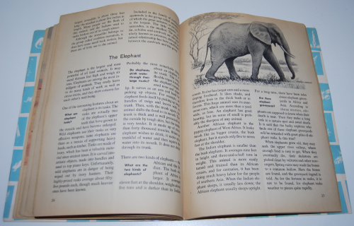 How & why book of wild animals 9