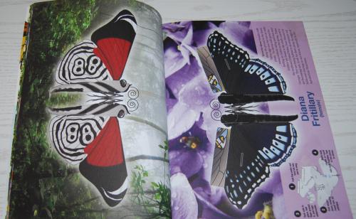 Beautiful pressout flying butterflies 4