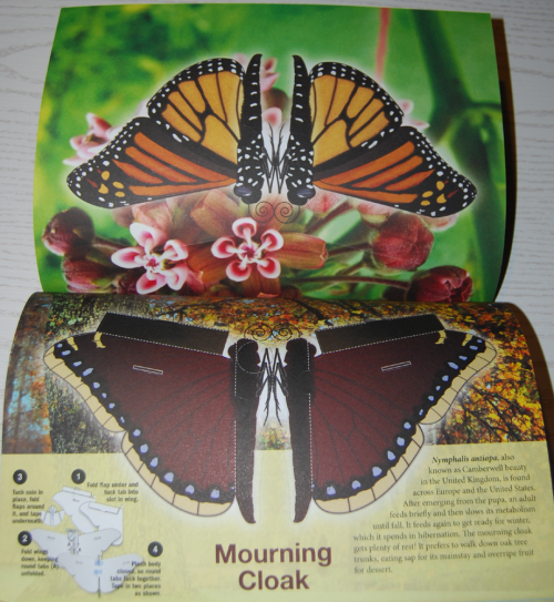 Beautiful pressout flying butterflies 7