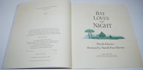 Bat loves the night 2