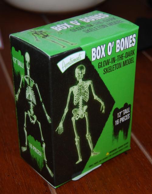 Glow in the dark box of bones x
