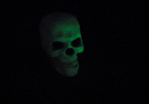 Halloween 2021 3