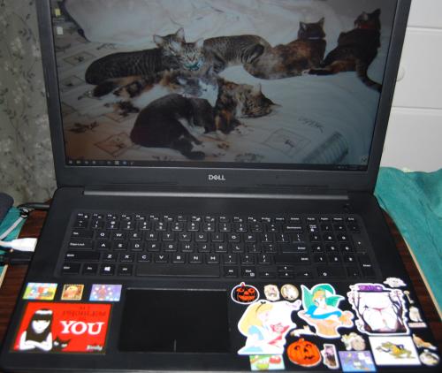 Laptop sticker redo xx
