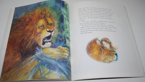 Sarah's lion 7