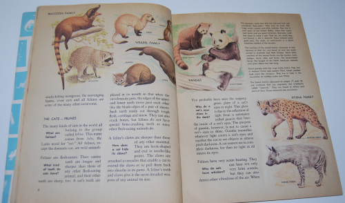 How & why book of wild animals 3