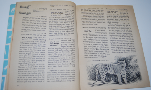How & why book of wild animals 4
