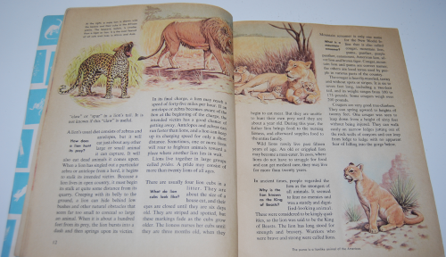 How & why book of wild animals 5