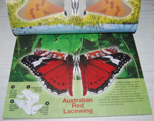 Beautiful pressout flying butterflies 2
