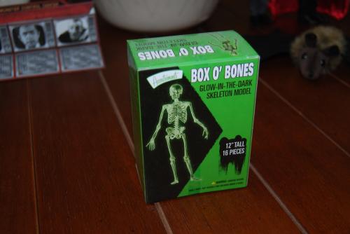Glow in the dark box of bones