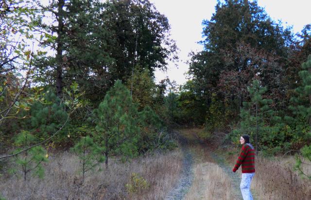 claypool cemetery trail